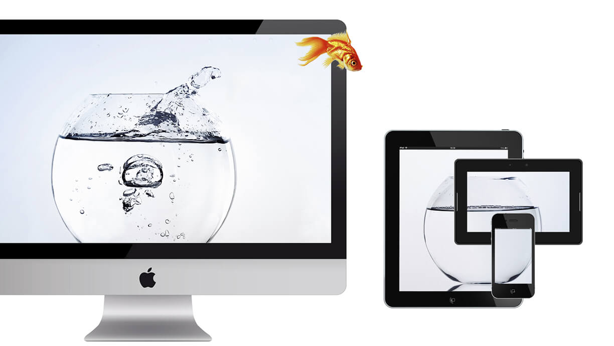Making the Transition to Responsive Web Design